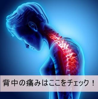 背中の痛みストレートネック